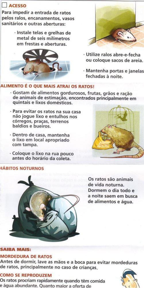 rato3